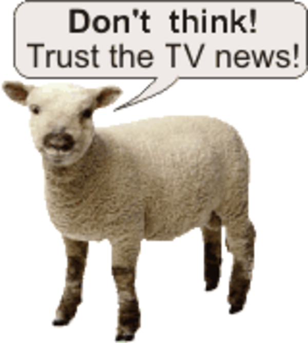 sheep | Sheeple | Know Your Meme