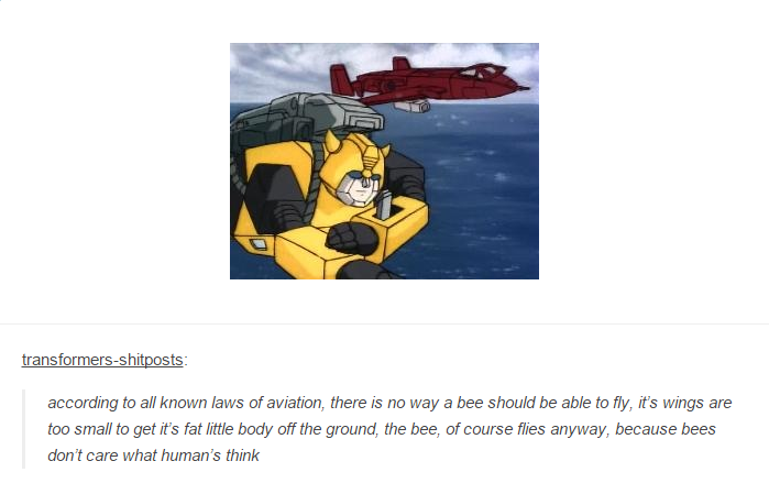 according to all known laws of aviation copypasta