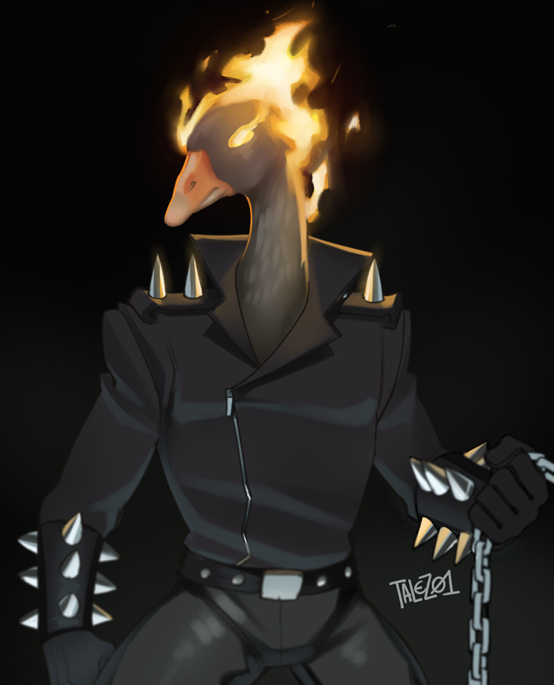 Goose Rider   Goose on Fire / Fire Duck   Know Your Meme