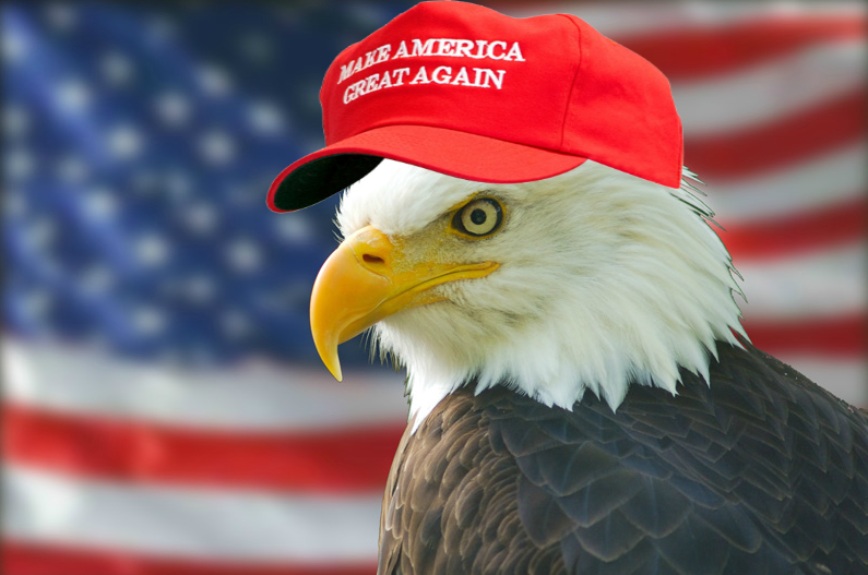 eagle | Make America Great Again | Know Your Meme