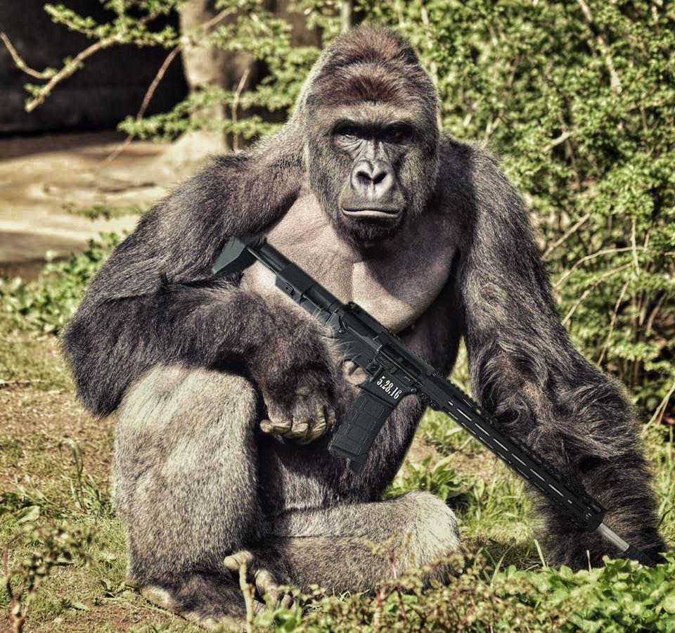 Открытка с гориллой