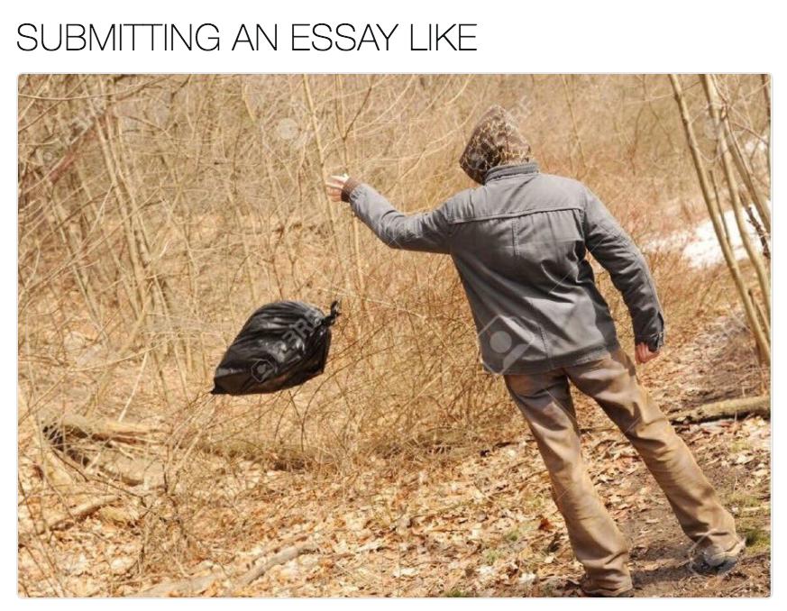 Essay like