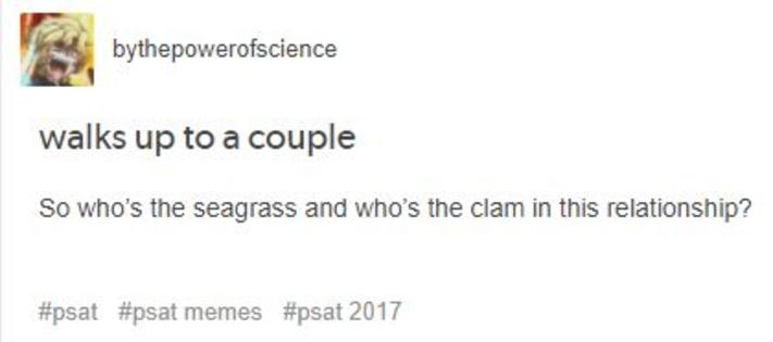 So Whos The Seagrass And Whos The Clam In This Relationship