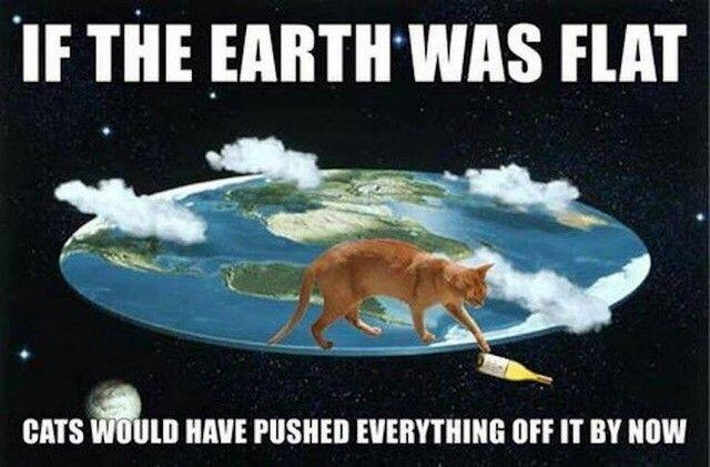 If The Earth Was Flat Cats Would Have Pushed Everything Off It By