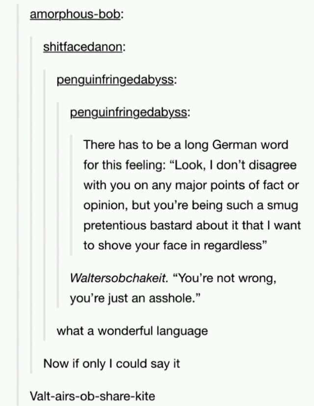 1b1 thank you german language! tumblr know your meme