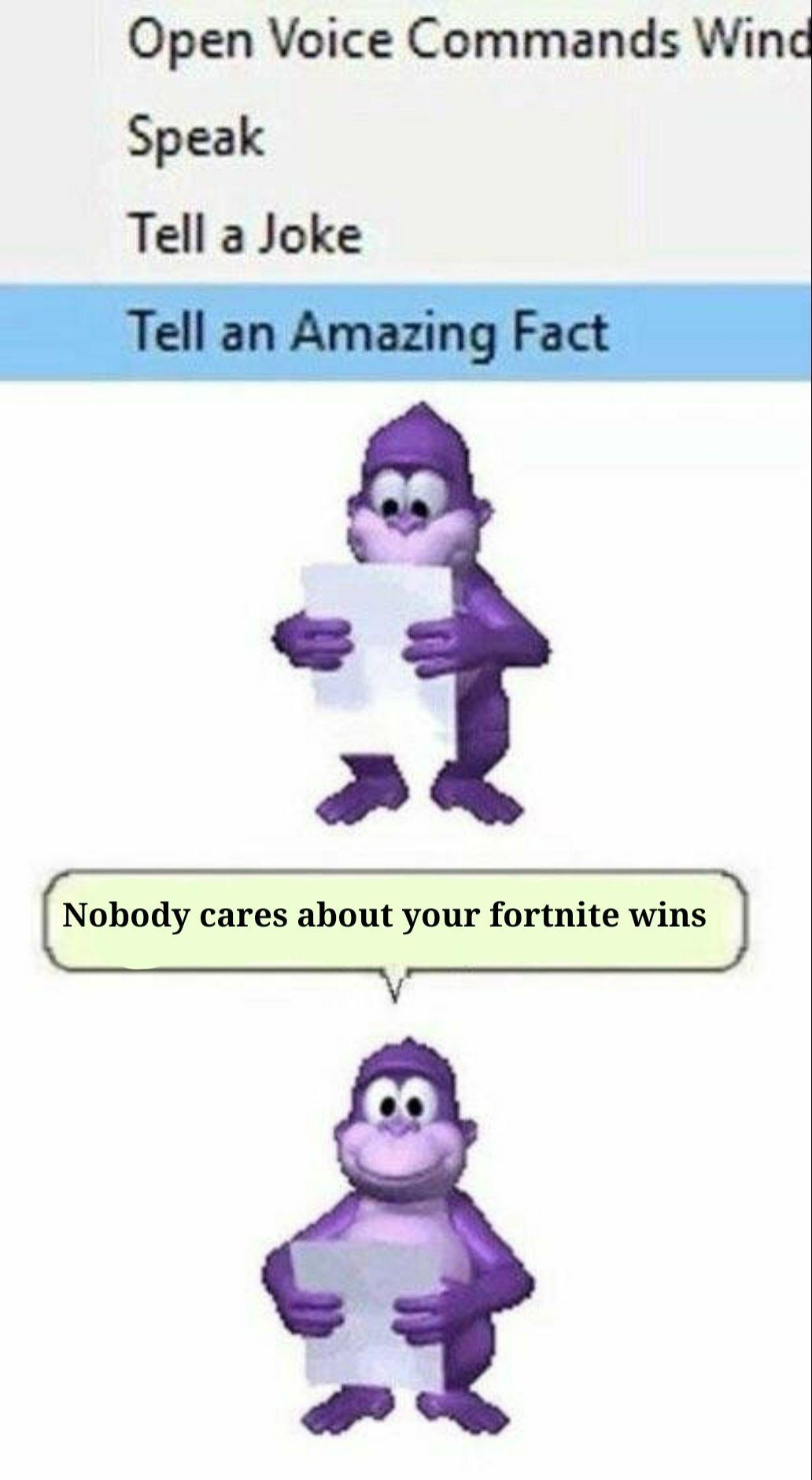 tell an amazing fact no one cares about your fortnite wins - amazing fortnite wins