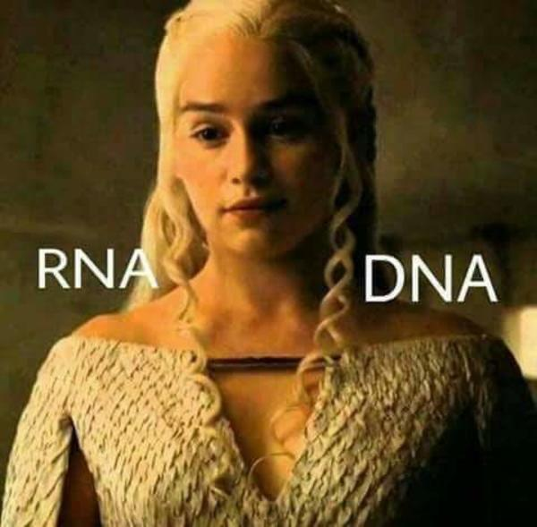 DNAerys | Game of Thrones | Know Your Meme