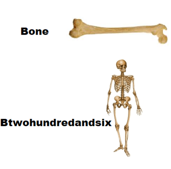 Me💀irl | Name Puns | Know Your Meme