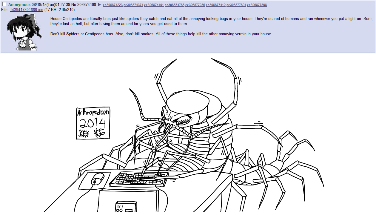 critters posting on 4chan - centipede posting on 4chan