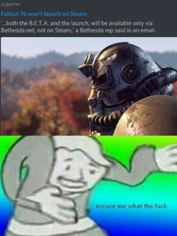 Fallout 76 will not launch on Steam | Excuse Me What the