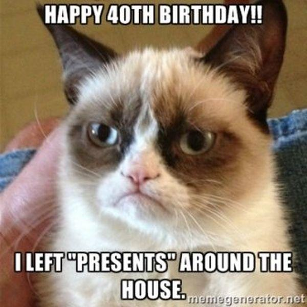 Grumpy Cat Wishes You Happy Birthday Memes Know Your Meme