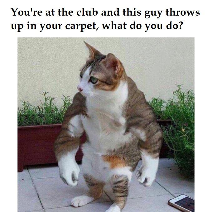 khajit has gains if you have whey  | You're In The Club And