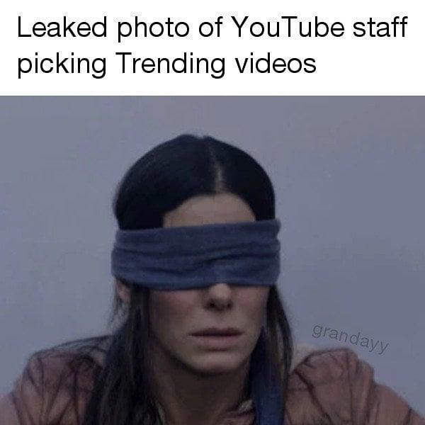 Leaked Photo Of Youtube Staff Picking Trending Videos Bird Box