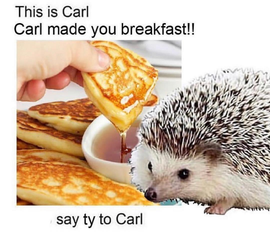 Carl the hedgehog carl made you breakfast