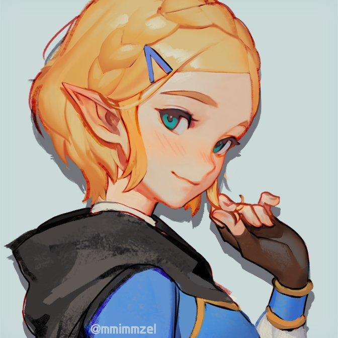 Zelda With Short Hair The Legend Of Zelda Breath Of The Wild Know Your Meme