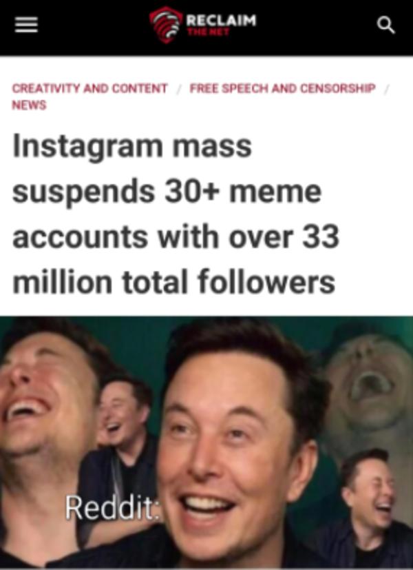 Reddit after Instagram bans meme accounts   July 2019 Instagram Meme