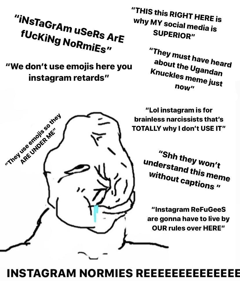 """Another """"Reddit user who calls Instagram users normies"""" starter pack"""