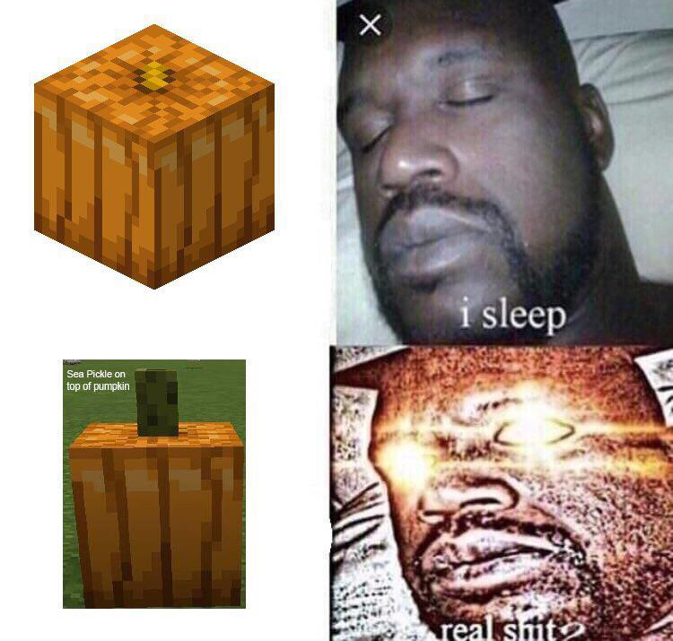 This Could Also Fit To R Detailcraft R Minecraftmemes Minecraft Know Your Meme Where to find sea pickles, how to get them to grow, what you can do with sea pickles, and anything else. r minecraftmemes minecraft