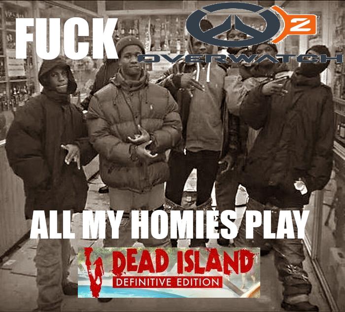Fuck Niggers All My Homies Hate Niggers