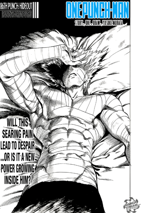 Anybody Got That L Oreal Meme With Chapter 127 S Cover Of Garou R Onepunchman One Punch Man Know Your Meme