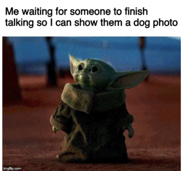 Me waiting for someone to finish talking so I can show them dog photos |  /r/BabyYoda | Baby Yoda | Know Your Meme