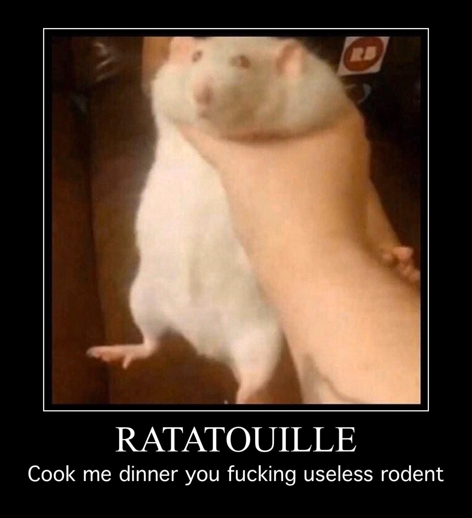 Ratatouille Cook Me Dinner You Fucking Useless Rodent Fat Rat Being Grabbed Know Your Meme