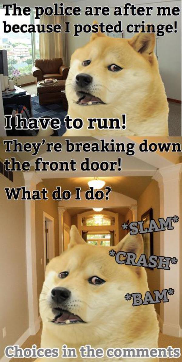 Doge Posted Cringe Ironic Doge Memes Know Your Meme