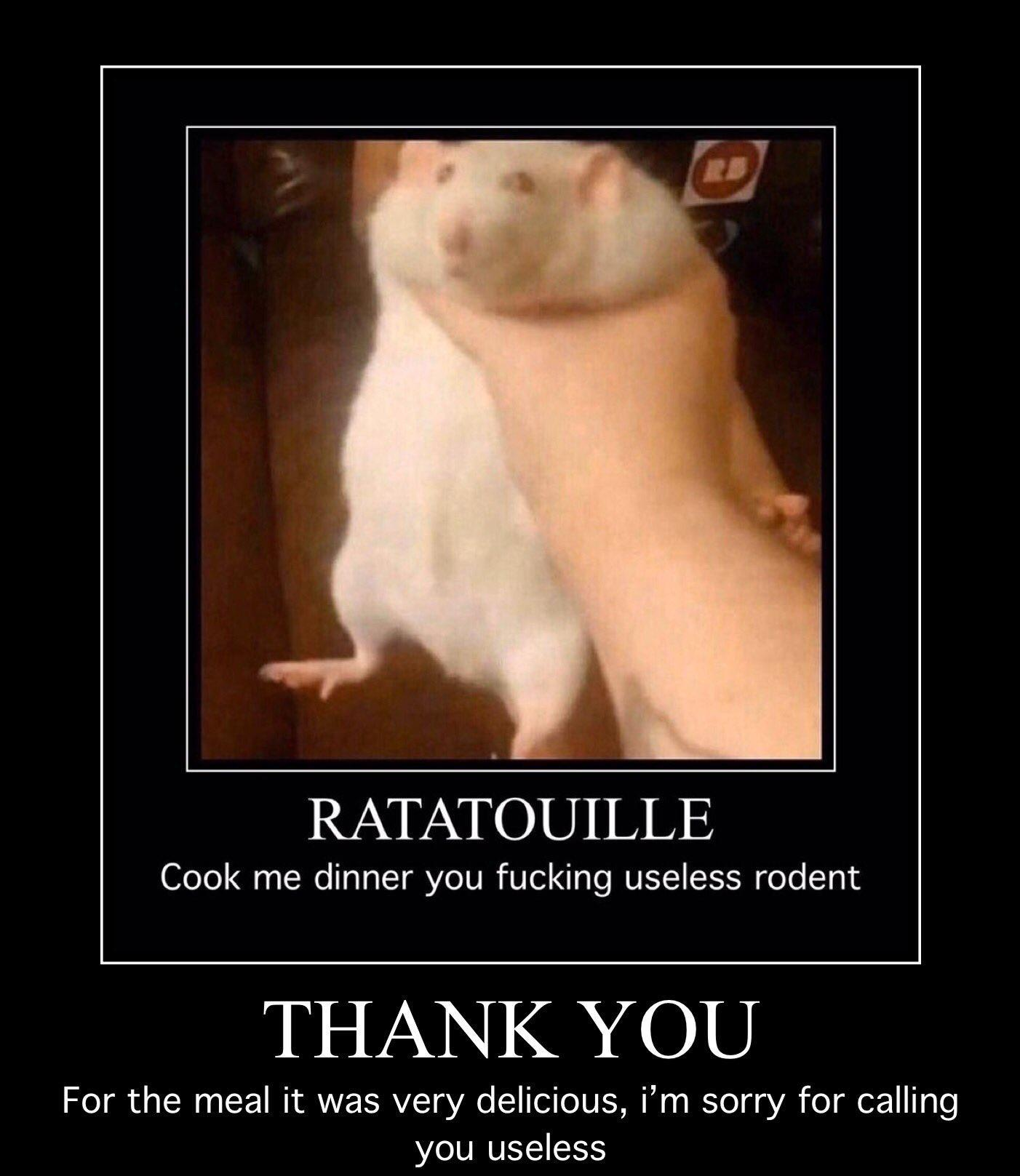 Thank You For The Meal Fat Rat Being Grabbed Know Your Meme
