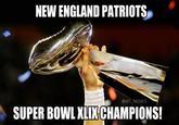 Tom Brady Talks Deflate Gate Deflategate Know Your Meme