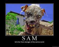 sam the worlds ugliest dog