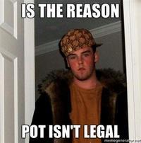 S THE REASON POT ISNT LEGAL memegenerator.ne Kyle Craven facial hair photo caption