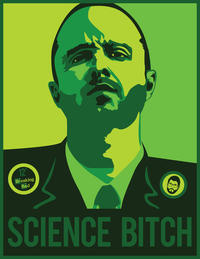 12 Breaking Bad SCIENCE BITCH Aaron Paul Breaking Bad Walter White Jesse  Pinkman Green Poster Facial ...