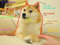 doge coin usd