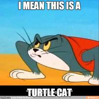 Tom And Jerry Image Gallery Know Your Meme