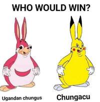 Learn These Ugandan Chungus Wallpaper