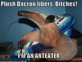 Fuck you i am an anteater pics 327