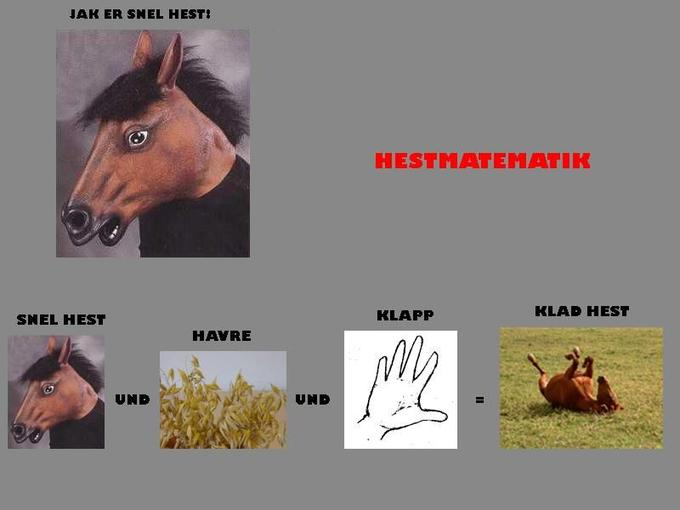Hestmatematik