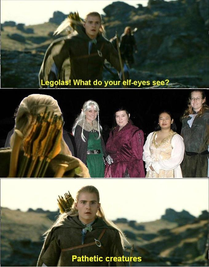 Image - 14614 | What do your elf eyes see? | Know Your Meme