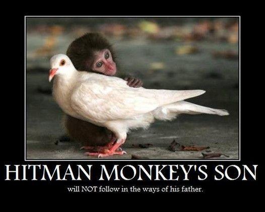 Image 27896 Hitman Monkey Know Your Meme