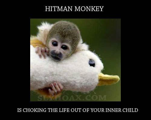 Image 27897 Hitman Monkey Know Your Meme