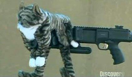 postal 2 cat silencer gif