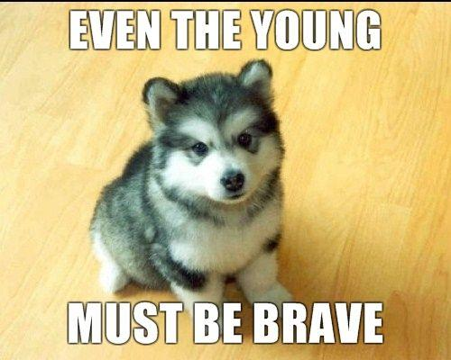 Image - 76530] | Baby Courage Wolf | Know Your Meme