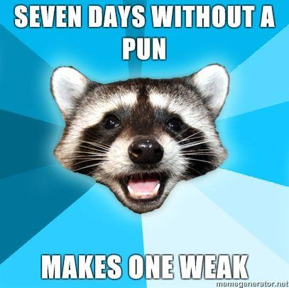 Lame Pun Coon Know Your Meme
