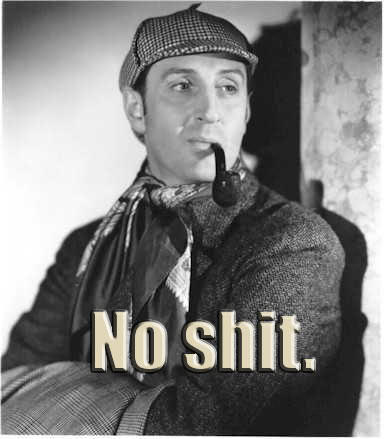 Image result for no shit sherlock