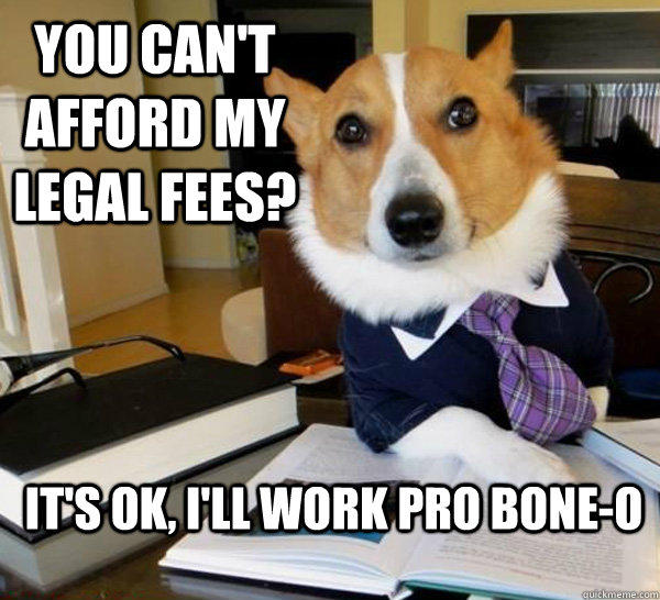 Lawyer dog know your meme you cant affordm egal feese tsok fll work pro bone o solutioingenieria Choice Image
