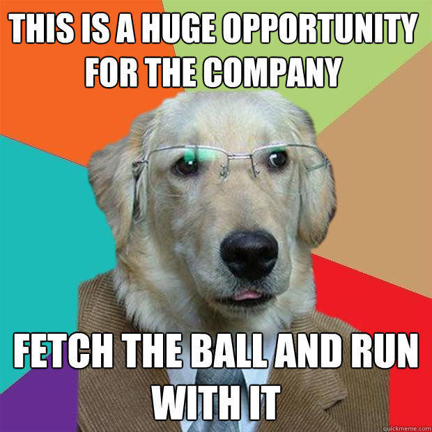 Dogs know your meme this isa huge opportunity for the company fetch the balland run withit quickmeme solutioingenieria Choice Image