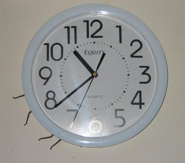 Clock Spider / Clockspider