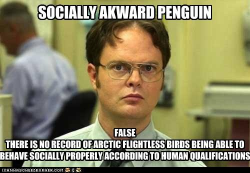 image 339389 socially awkward penguin know your meme
