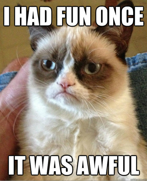 fun time is over grumpy cat know your meme
