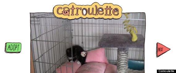 Catrolet